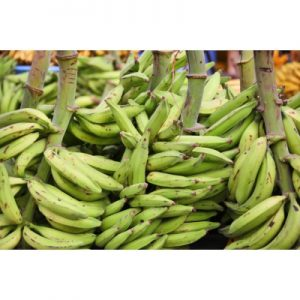 plantain bunch