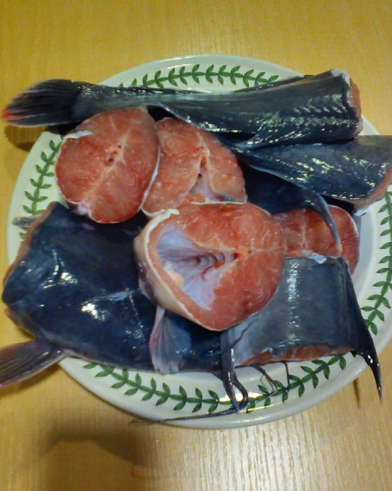 Fresh catfish (eja aro)
