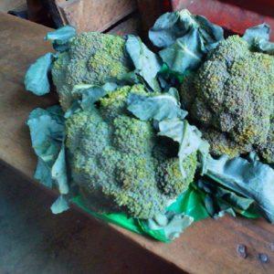 Buy broccoli in Nigeria