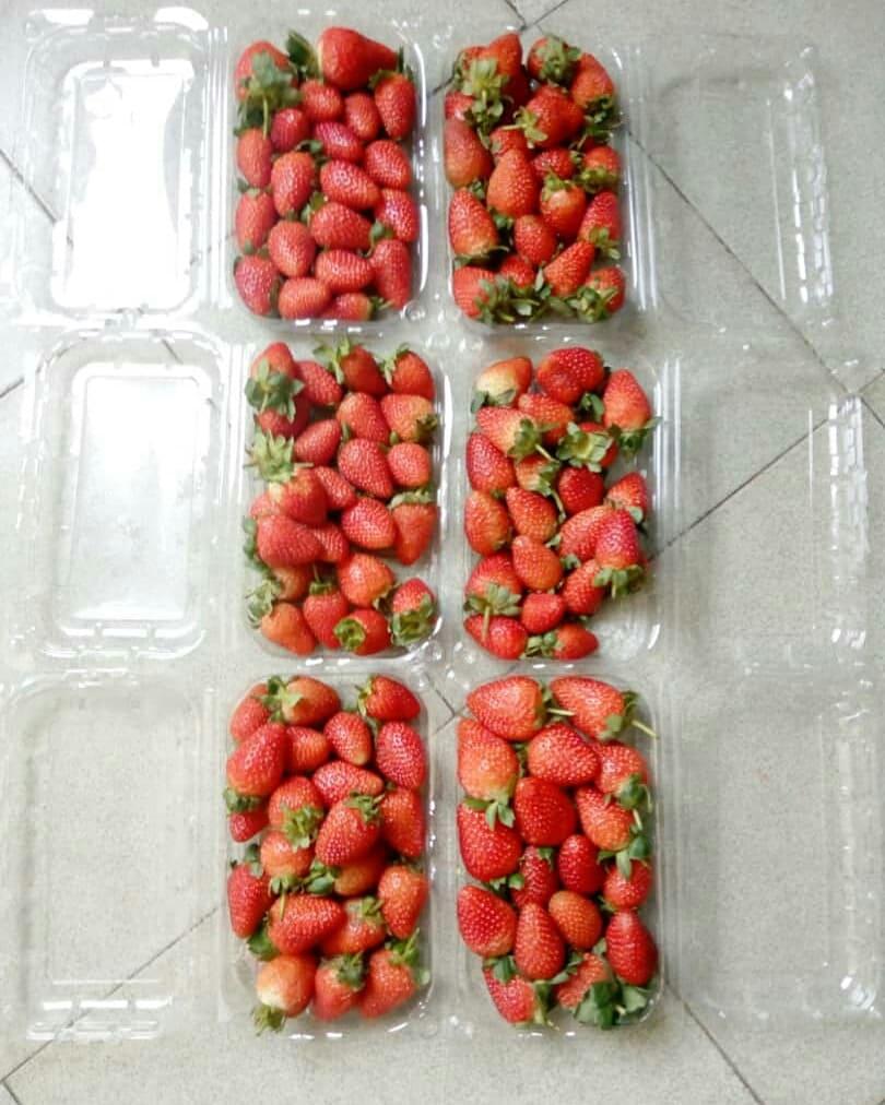buy strawberry in Nigeria