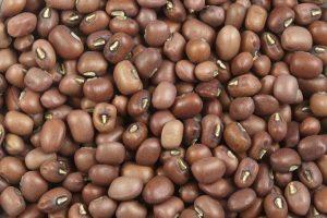Black beans for frejon