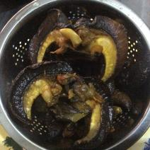 Fried Snail