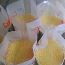 Bag Of Rice (Aroso)