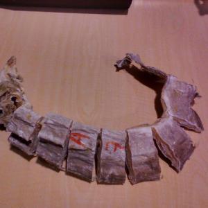 Stockfish (Osan)