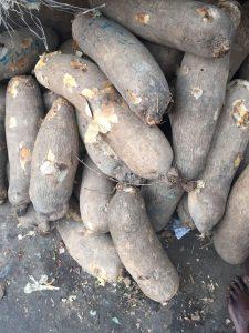 Buying yams in Nigeria