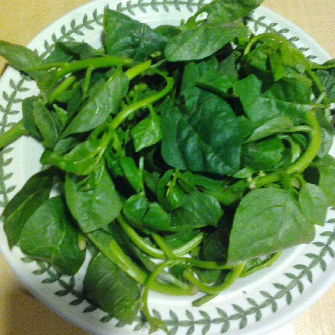 Buy spinach in Nigeria