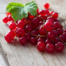 red currant in Lagos